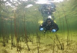Pažintinis nėrimas su povandeniniu filmavimu Platelių ežere