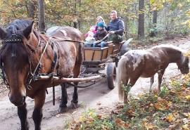Pasivažinėjimas arklio kinkiniu (brička)