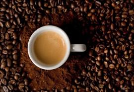 Kavos aromatų degustacija