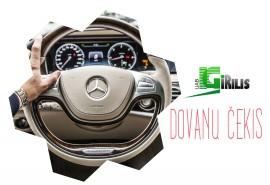 Profesionalios automobilio priežiūros paslaugos (34,46 Eur)