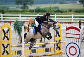 Jojimo treniruotė žirgų entuziastui