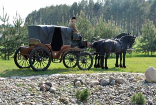 Fotosesija prašmatnioje, gražuoliais žirgais kinkytoje karietoje