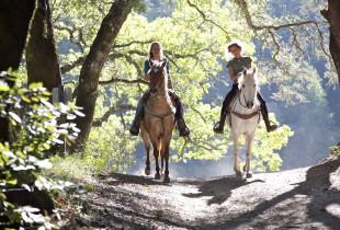 Išvyka į gamtą raitomis po Kurtuvėnų regioninio parko apylinkes