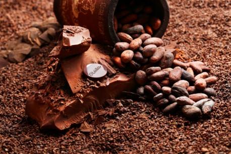 Ekskursija RŪTOS šokolado muziejuje ir degustacija PARAGAUKIME ŠOKOLADO ISTORIJOS