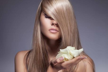 Plaukų laminavimas ir tonavimas su MATRIX dažais